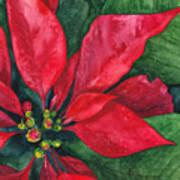Navidad Print by Casey Rasmussen White