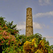 Nevis Sugar Mill II Print by Louise Fahy