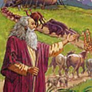 Noah's Ark Print by Valer Ian