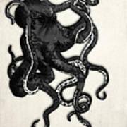 Octopus Print by Nicklas Gustafsson
