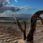 Ode To The Estuary Print by Kym Clarke