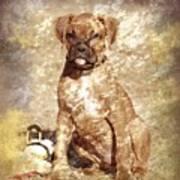 Old Time Boxer Portrait Print by Angie Tirado-McKenzie