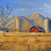 Old Vineyard Dairy Farm Print by Jeff Brimley