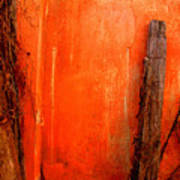 Orange Wall By Michael Fitzpatrick Print by Mexicolors Art Photography