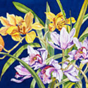 Orchids In Blue Print by Lucy Arnold