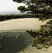 Oregon Dunes 3 Print by Eike Kistenmacher