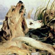 Otter Hounds Print by Sir Edwin Landseer