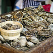Oysters At The Market Print by Heather Applegate
