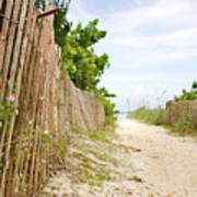 Path To The Beach Print by Matt Tilghman
