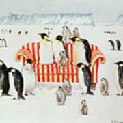 Penguins On A Red And White Sofa  Print by EB Watts