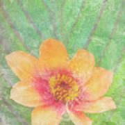 Perfect Peach Print by JQ Licensing