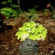 Private Garden Go Away Print by Douglas Barnett