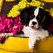 Puppy In Yellow Bucket  Print by Garry Gay