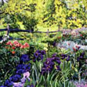Purple Garden Print by David Lloyd Glover