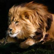 Raw Lion Power Print by Julie L Hoddinott