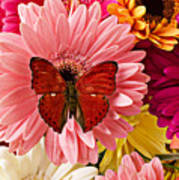 Red Butterfly On Bunch Of Flowers Print by Garry Gay