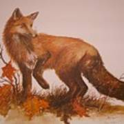 Red Fox Print by Ben Kiger