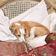Regal Beagle Print by Debra Jones