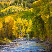 River And Aspens Print by Inge Johnsson