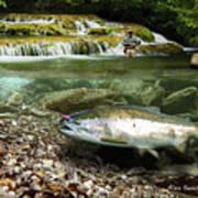 River Chrome Print by Alex Suescun