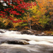 River Rapids Fall Nature Scenery Print by Oleksiy Maksymenko