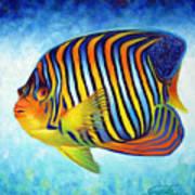 Royal Queen Angelfish Print by Nancy Tilles