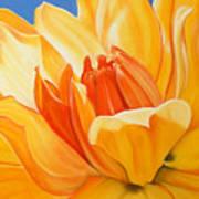 Saffron Splendour Print by Colleen Brown
