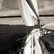Sailing Under The Arthur Ravenel Jr. Bridge In Charleston Sc Print by Dustin K Ryan