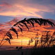 Sanibel Island Sunset Print by Nick Flavin