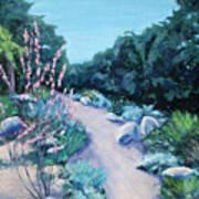 Santa Barbara Botanical Gardens Print by M Schaefer
