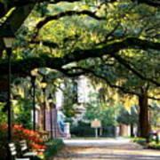 Savannah Park Sidewalk Print by Carol Groenen