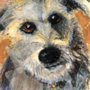 Scruffy Print by Arline Wagner