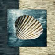 Seashell Souvenir Print by Lourry Legarde
