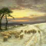 Sheep In The Snow Print by Joseph Farquharson