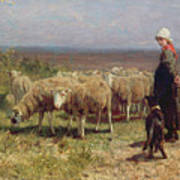Shepherdess Print by Anton Mauve