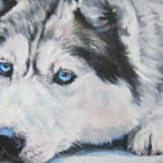 Siberian Husky Up Close Print by Lee Ann Shepard