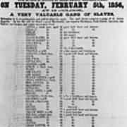 Slave Auction Notice Print by Photo Researchers