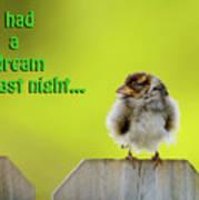 Sleeping Baby Sparrow Print by Betty LaRue