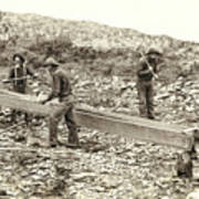 Sluice Box Placer Gold Mining C. 1889 Print by Daniel Hagerman