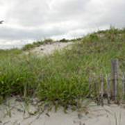 Smugglers Beach Dune South Yarmouth Cape Cod Massachusetts Print by Michelle Wiarda