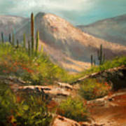 Southwest Beauty Print by Robert Carver