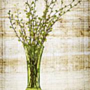Spring Vase Print by Elena Elisseeva