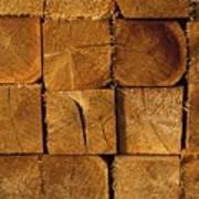Stack Of Logs Print by David Chapman
