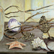 Still Life With Seashells And Pine Cones Print by Ethel Vrana