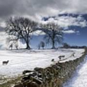 Stone Fence, Weardale, County Durham Print by John Short