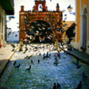 Street Pigeons Print by Perry Webster
