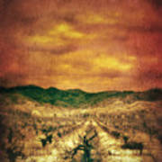 Sunset Over Vineyard Print by Jill Battaglia