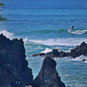 Surfing The Rugged Coastline Print by Bette Phelan