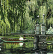 Swan Boats Print by Lisa Reinhardt