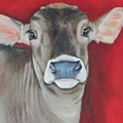 Taffy Print by Laura Carey